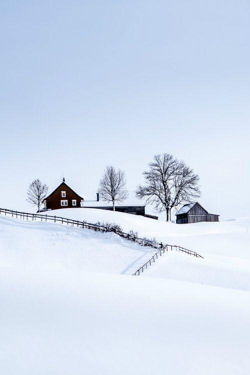 35 Mejores Imágenes Sobre Snow En Pinterest árboles Las Maravillas De Invierno Y Iglesia