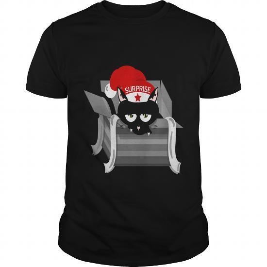 Cat reindeer with new christmas sweatshirt