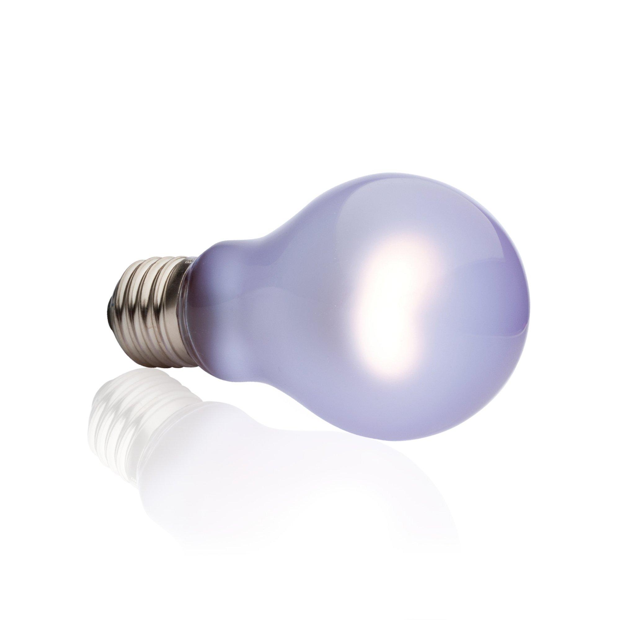 Exo Terra Daytime Heat Lamp 100w 100 W 2 5 In Lamp Bulb Bulb Incandescent Bulbs