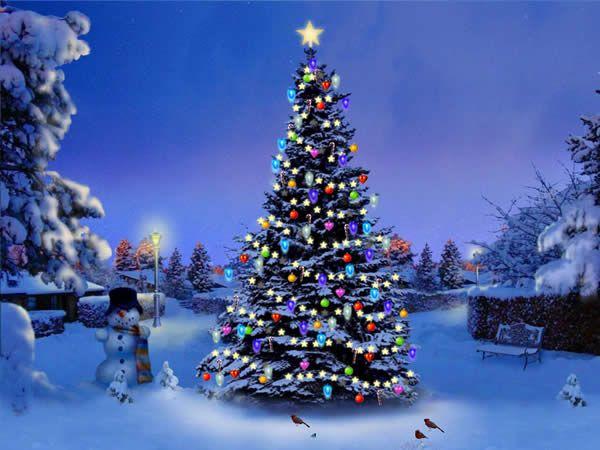 Protector De Pantalla En 3d Mi Arbol De Navidad My 3d Christmas Tree Imagenes De Arbol De Navidad Arbol De Navidad Colorido Fondo De Pantalla Navidad Arbol de navidad azul wallpaper
