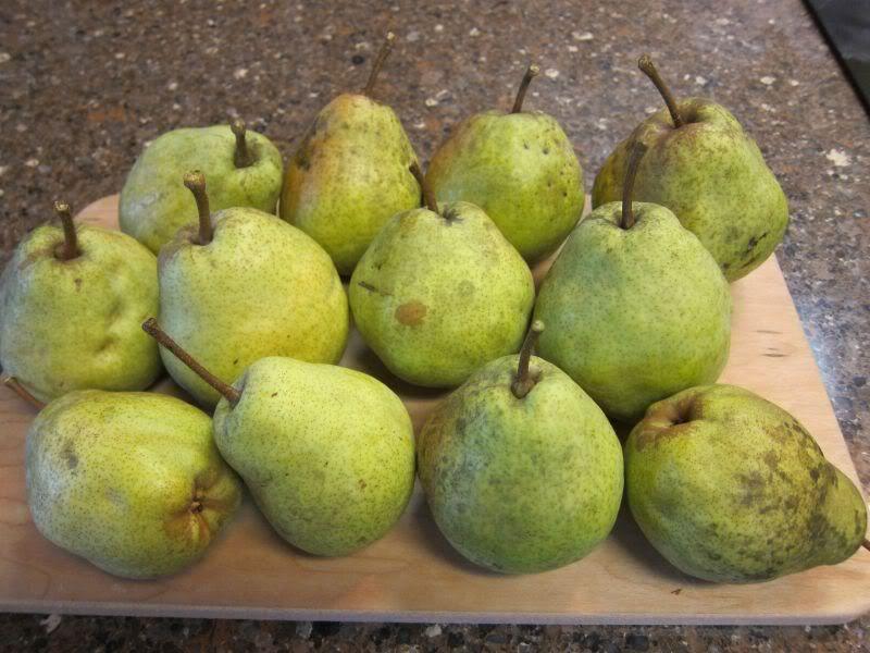 Name That Pear Harvest Forum Gardenweb Pear Honey Recipes Pear Recipes Pear