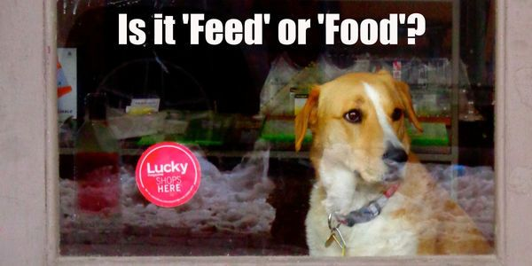 Petition Demand To Know What S In Fido S Bowl Feed Isn T Food
