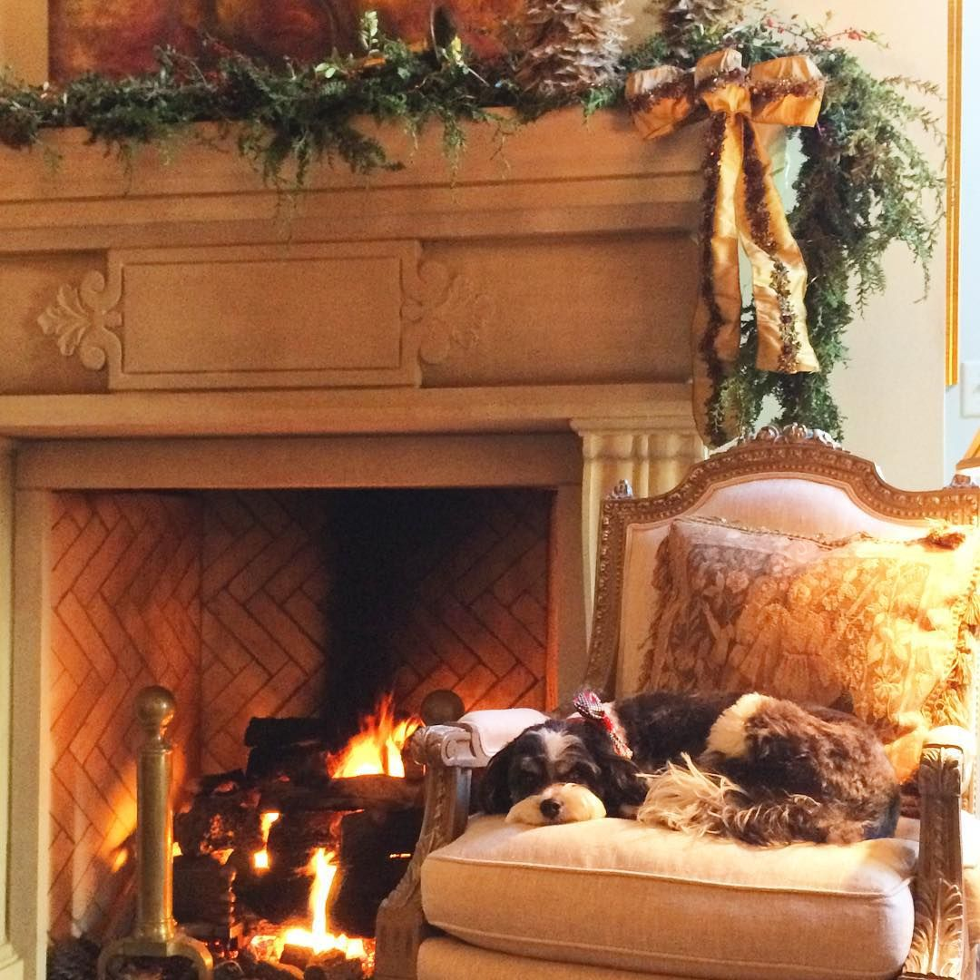 """""""We think today's homeowner's Cavapoo Buddy has the right idea for a Monday. A nap by a roaring fire - yes, please!"""""""