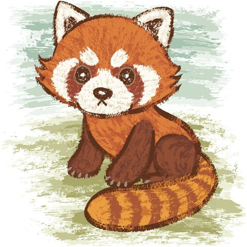 red panda drawing - Google Search