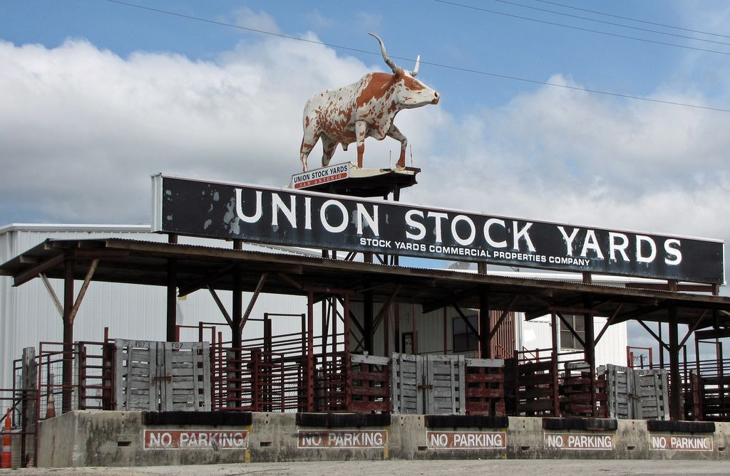 San Antonio Stockyard Cattle Entrance To San Antonio Union