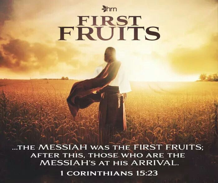 First Fruits Bible Resurrection Day God The Father