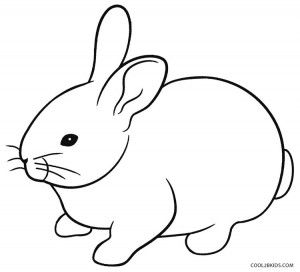 Rabbit Coloring Pages Free
