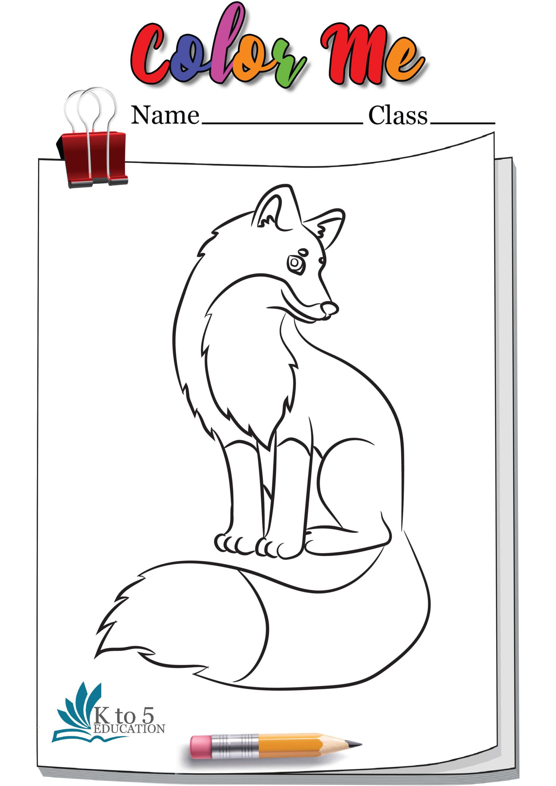 Beautiful Fox Coloring Page Worksheet In