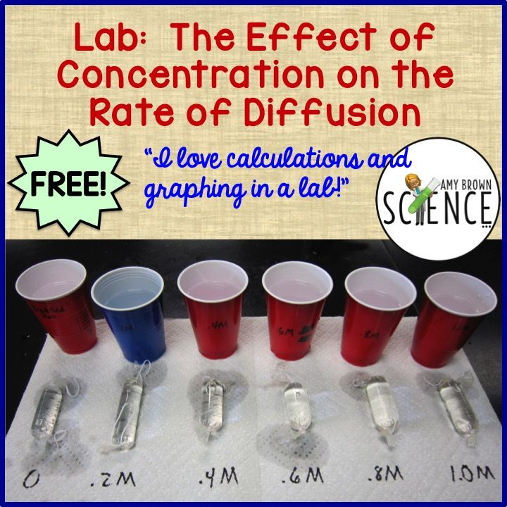 A lab that teaches osmosis diffusion concentration gradients a lab that teaches osmosis diffusion concentration gradients graphing scientific calculations fandeluxe Images