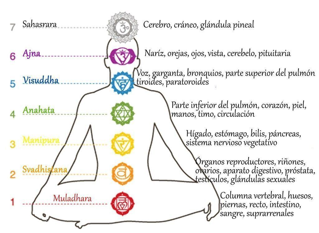 Resultado de imagen para localizacion de los chakras en el cuerpo ...