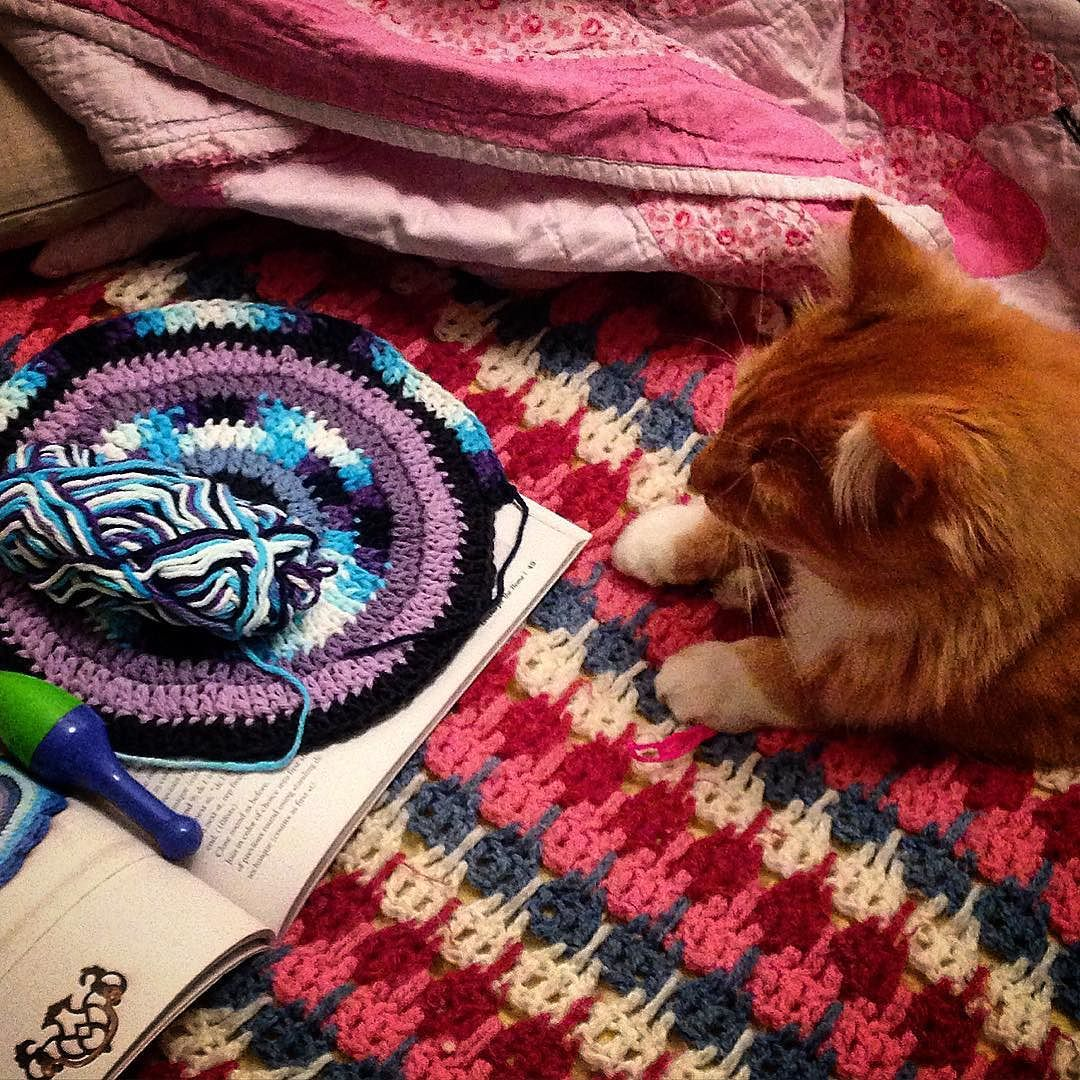 """It was all good until he """"helped"""" me lose my best yarn needle  however here is my work in progress mandala for Marinke that must be in the mail shortly! #crochet #cats #crochetandcats #catsofinstagram #Finnegan #mandala #mandalasformarinke #mandalasforwink #wip #depressionawareness #suicideawareness #crochetcorncupiscence #craftastherapy by mknyveld"""