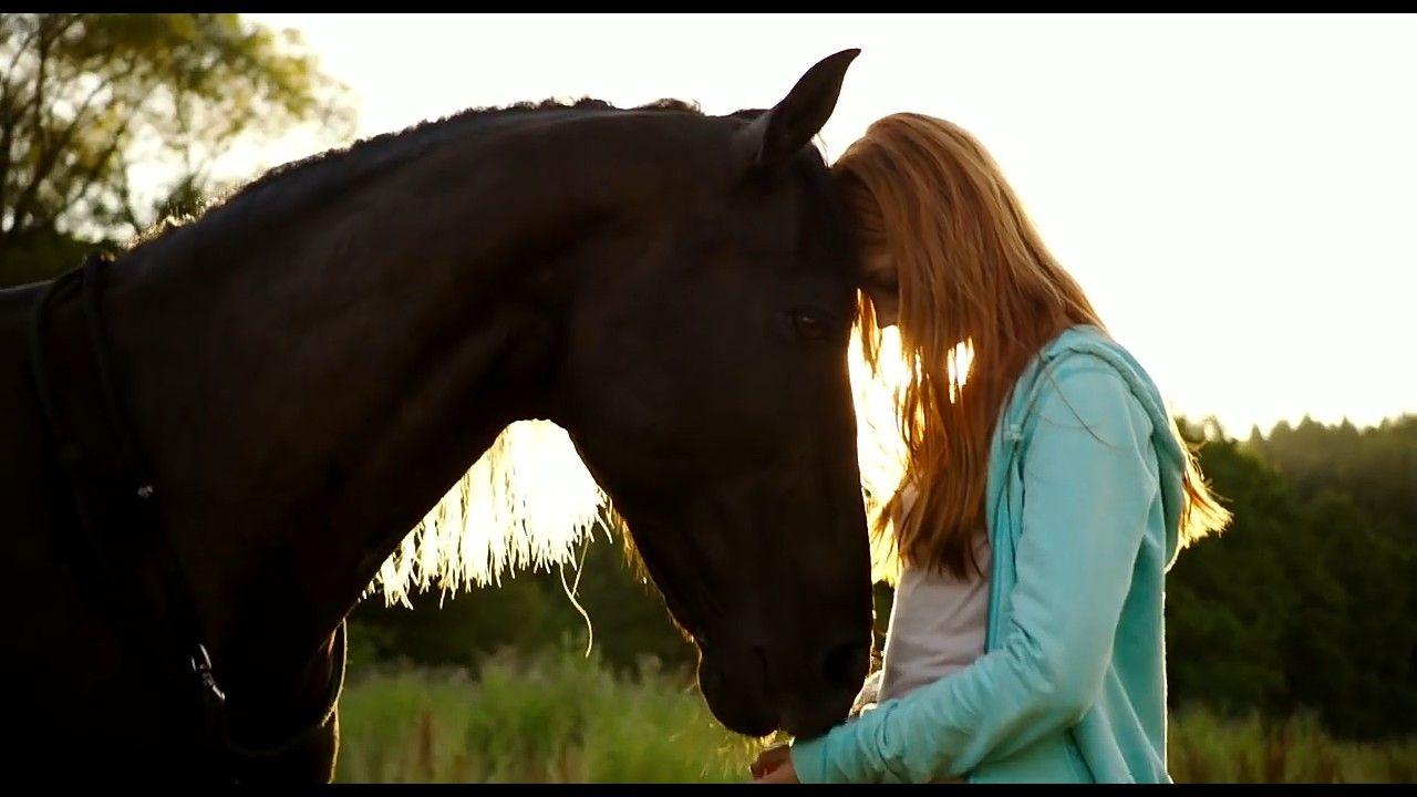 Szelvihar Mika Equestrian Horses Hollywood