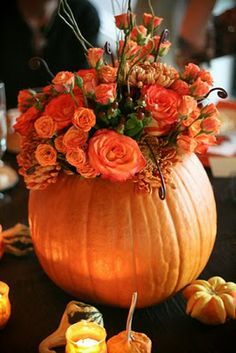 Beautiful fall colored flowers in a hollowed pumpkin centerpiece,  surrounded by mini pumpkins.   MMD Events - Welcome