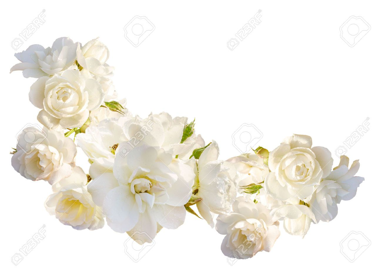 Funeral Flowers Images, Stock Pictures, Royalty Free Funeral ...