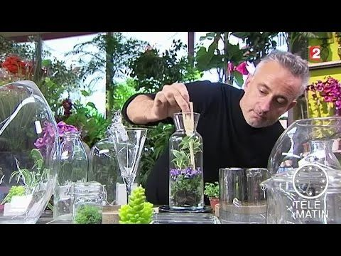 des plantes en bocal youtube bricolage terrarium. Black Bedroom Furniture Sets. Home Design Ideas