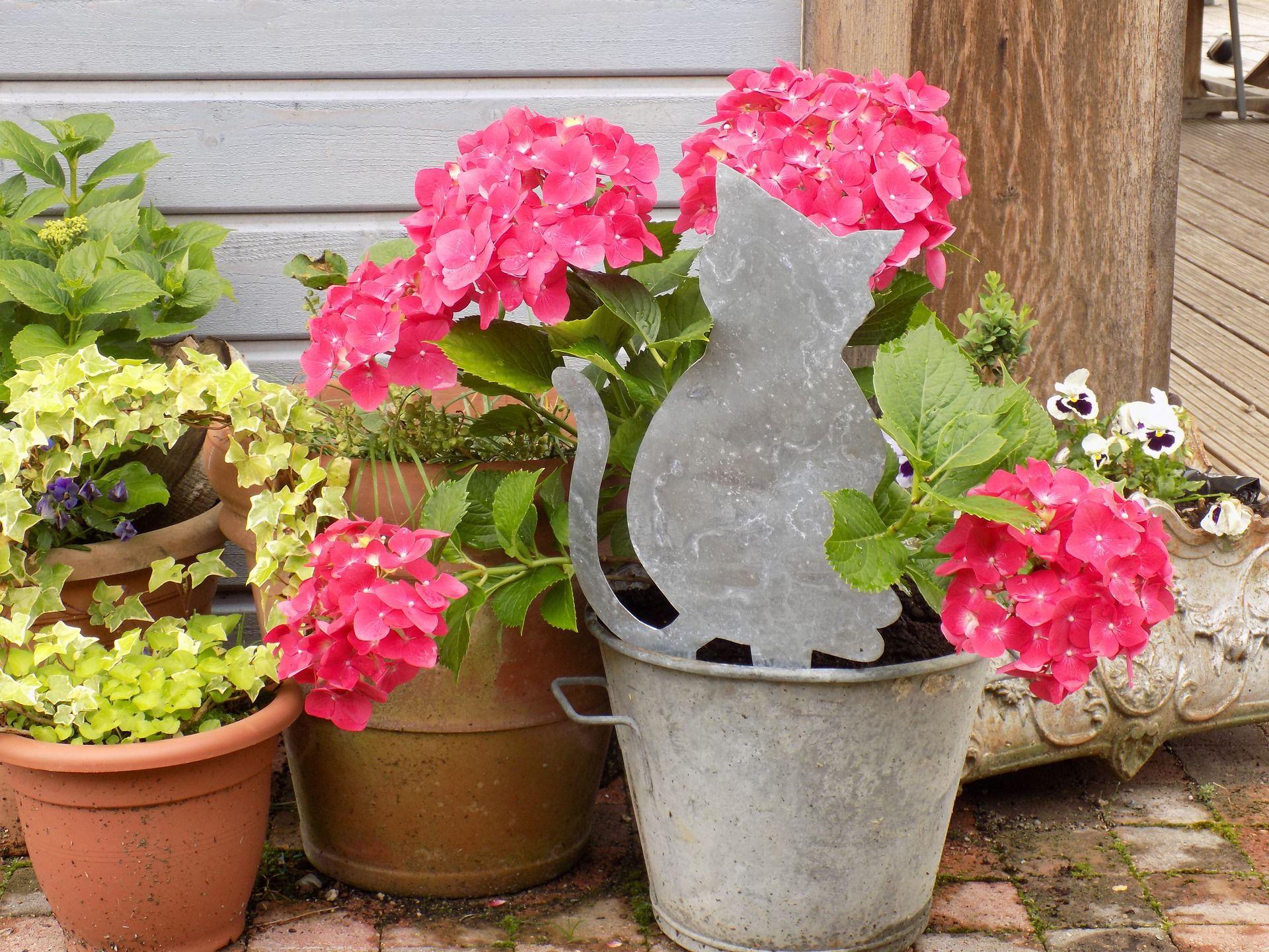Décoration de jardin silhouette chat debout en zinc à planter ...