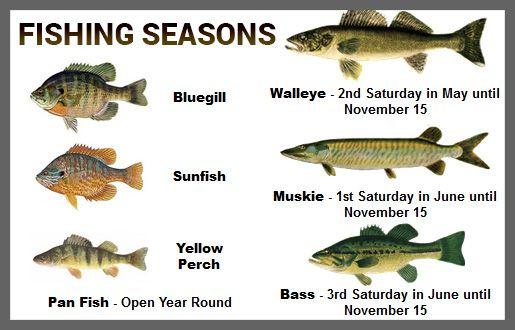 Fishing seasons ontario fish fish ricelakeon for Bass fishing season