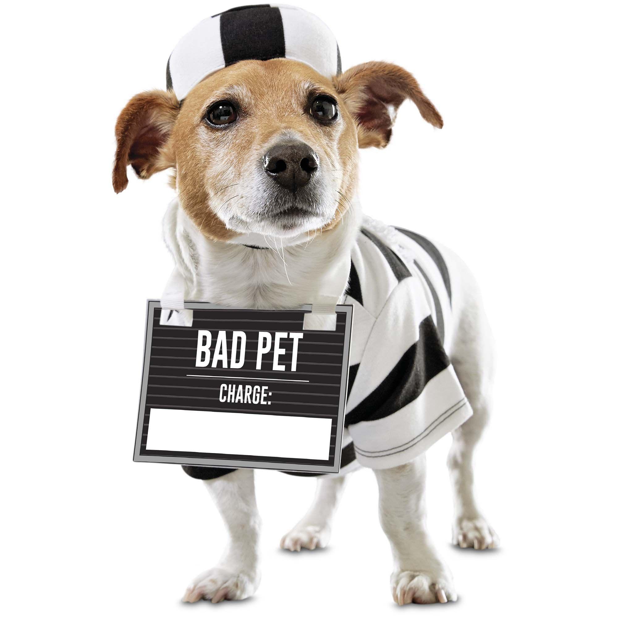 Bootique Prisoner Pet Costume X Large Diy Dog Costumes Pet