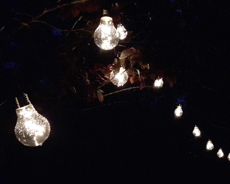 Partylichterkette Mit Led Birnen Ideal Zur Partybeleuchtung Fur Die Gartenparty Im Garten Oder Auch Innen Lichterkette Partybeleuchtung Party Lichterkette