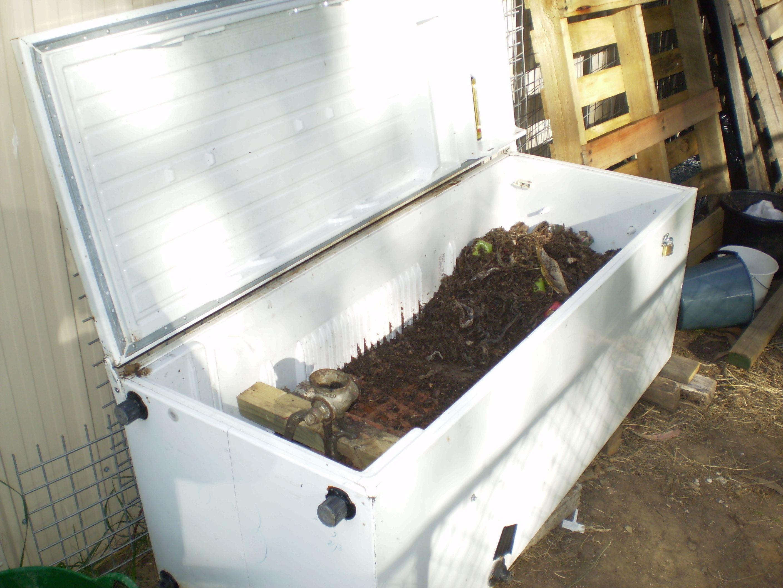 start a worm farm for profit worm farm farming and homesteads