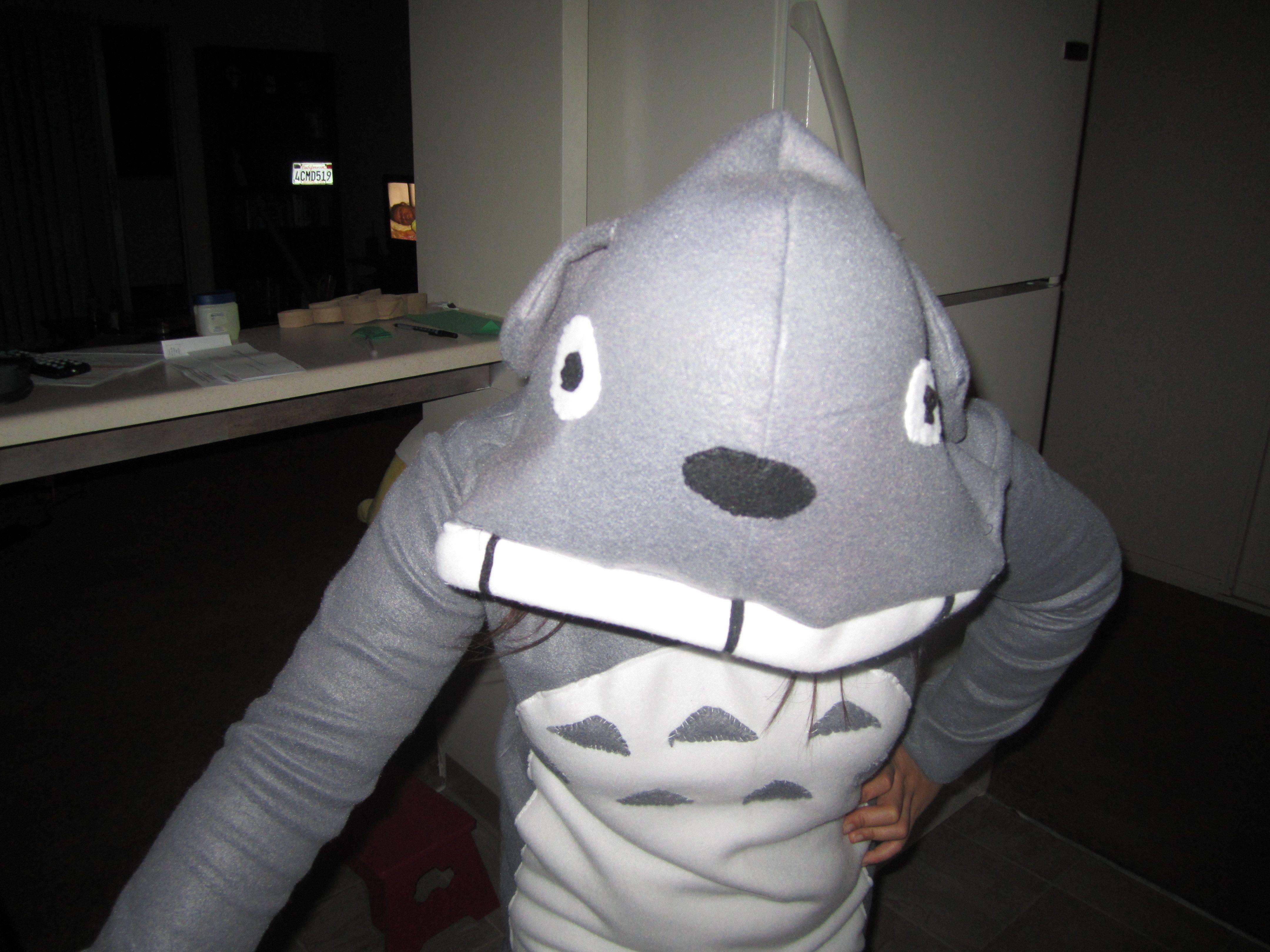 Totoro hoodie inspiration