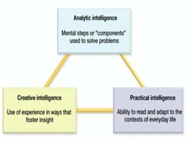 Psychlife Robert Sternberg Proposed A Theory Of Intelligence
