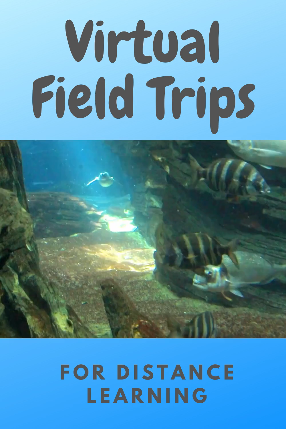 Make the best of distance learning by taking your students on a virtual field trip. 18 great ideas.