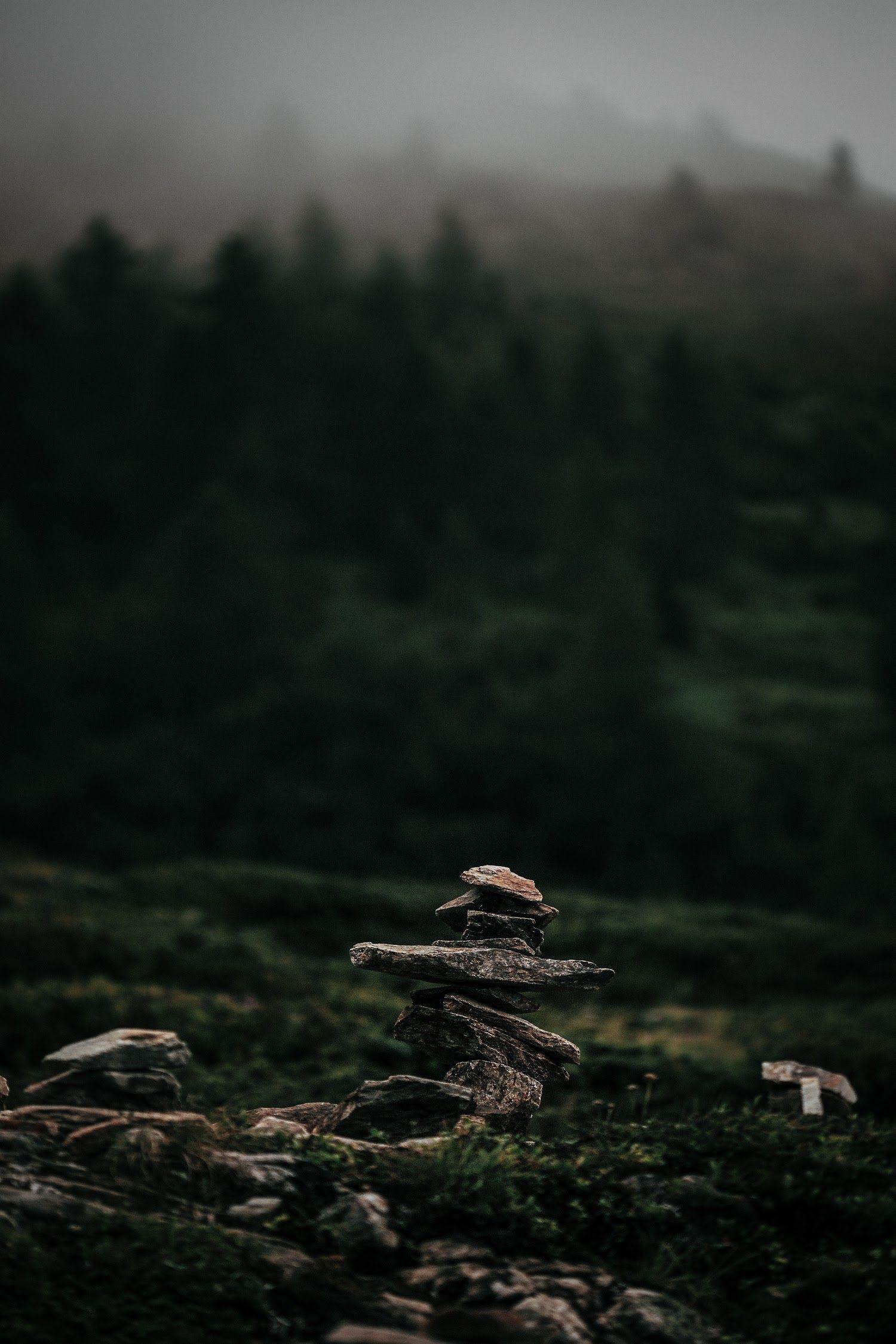 Thiên Nhiên Phong Cảnh by eberhard grossgasteiger