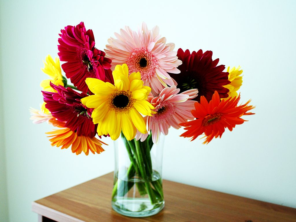 Flowers In A Vase Pictures Vase Wallpaper Download The Free