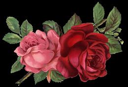 Vintage Victorian Papel De Carta Vintage De Paisajes Clipart De Flor Arte Con Flores Rosas De Epoca