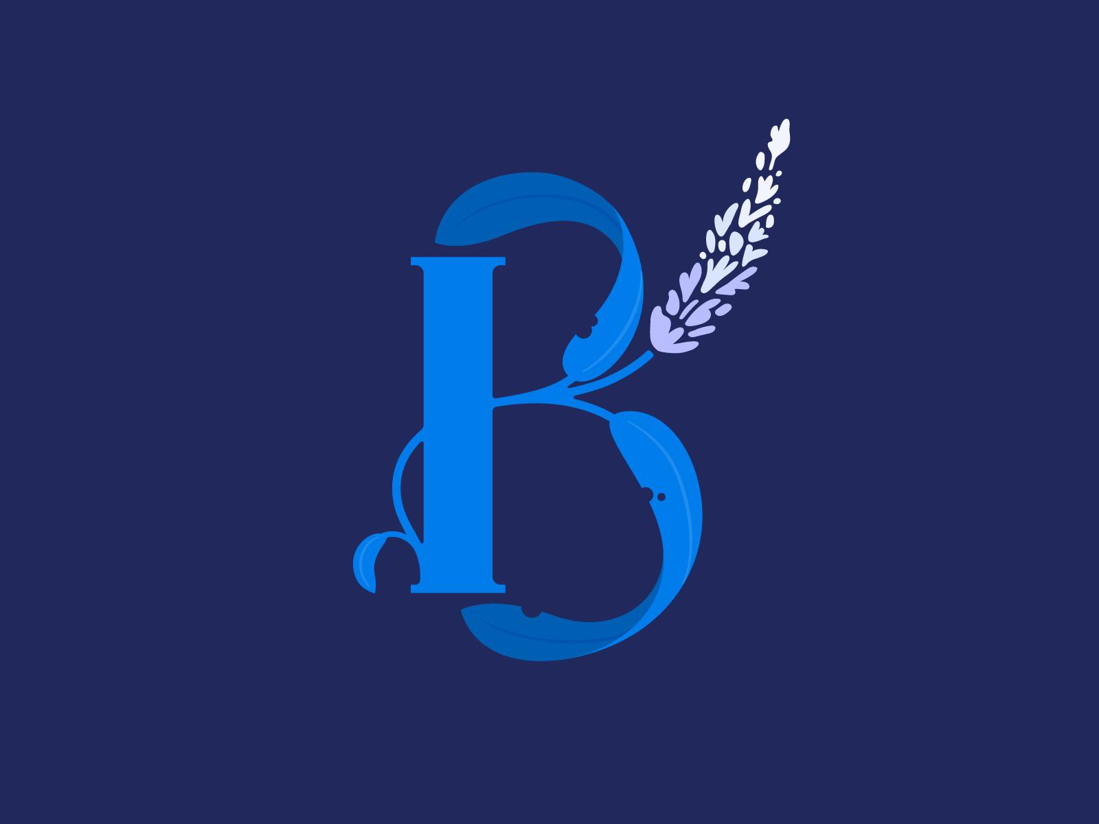Letter B Letter B Typography Alphabet Alphabet Illustration