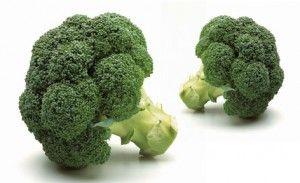 Cultivo del brócoli - Huertos Compartidos