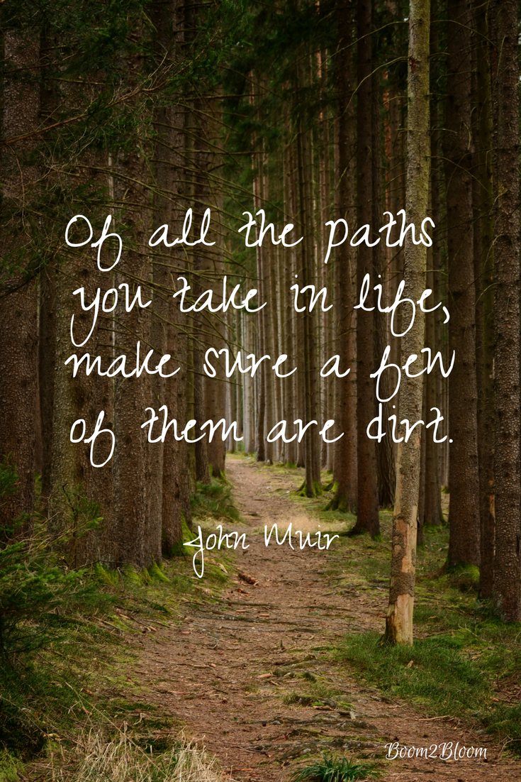 John Muir Paths Quote Art Poemsquotes Pinterest Nature