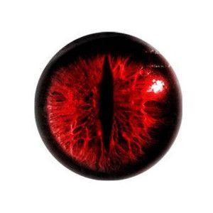Taxidermy Eye Ring Vampir Seni Wattpad
