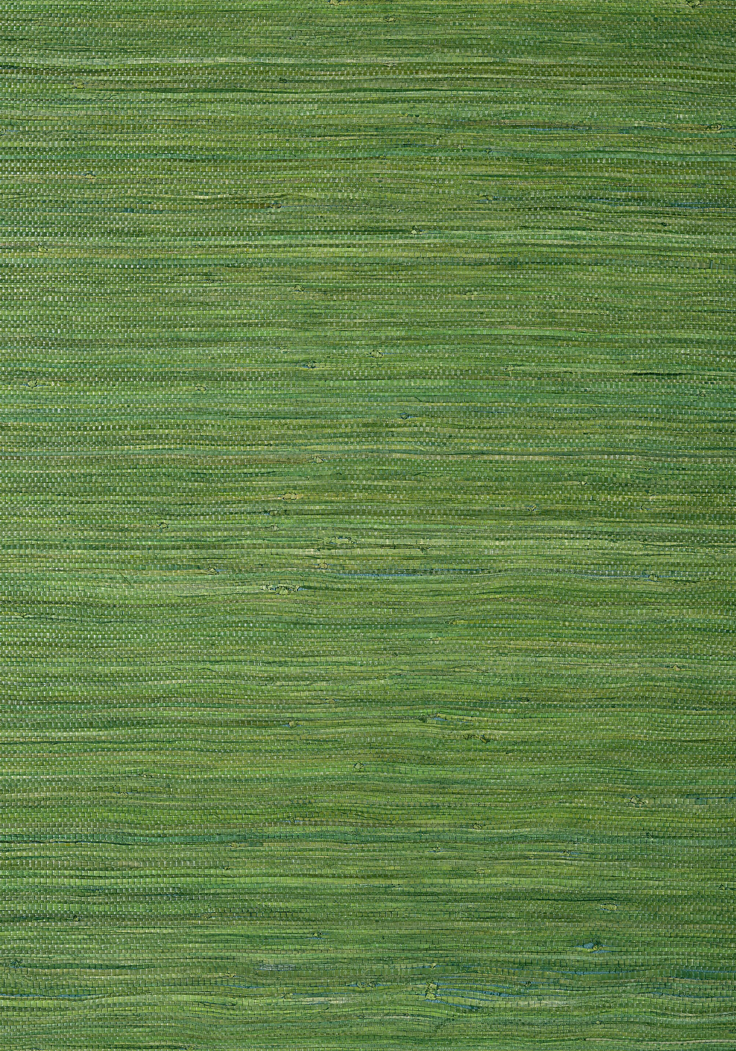 RAFFIA PALM, Emerald Green, T24074, Collection Grasscloth