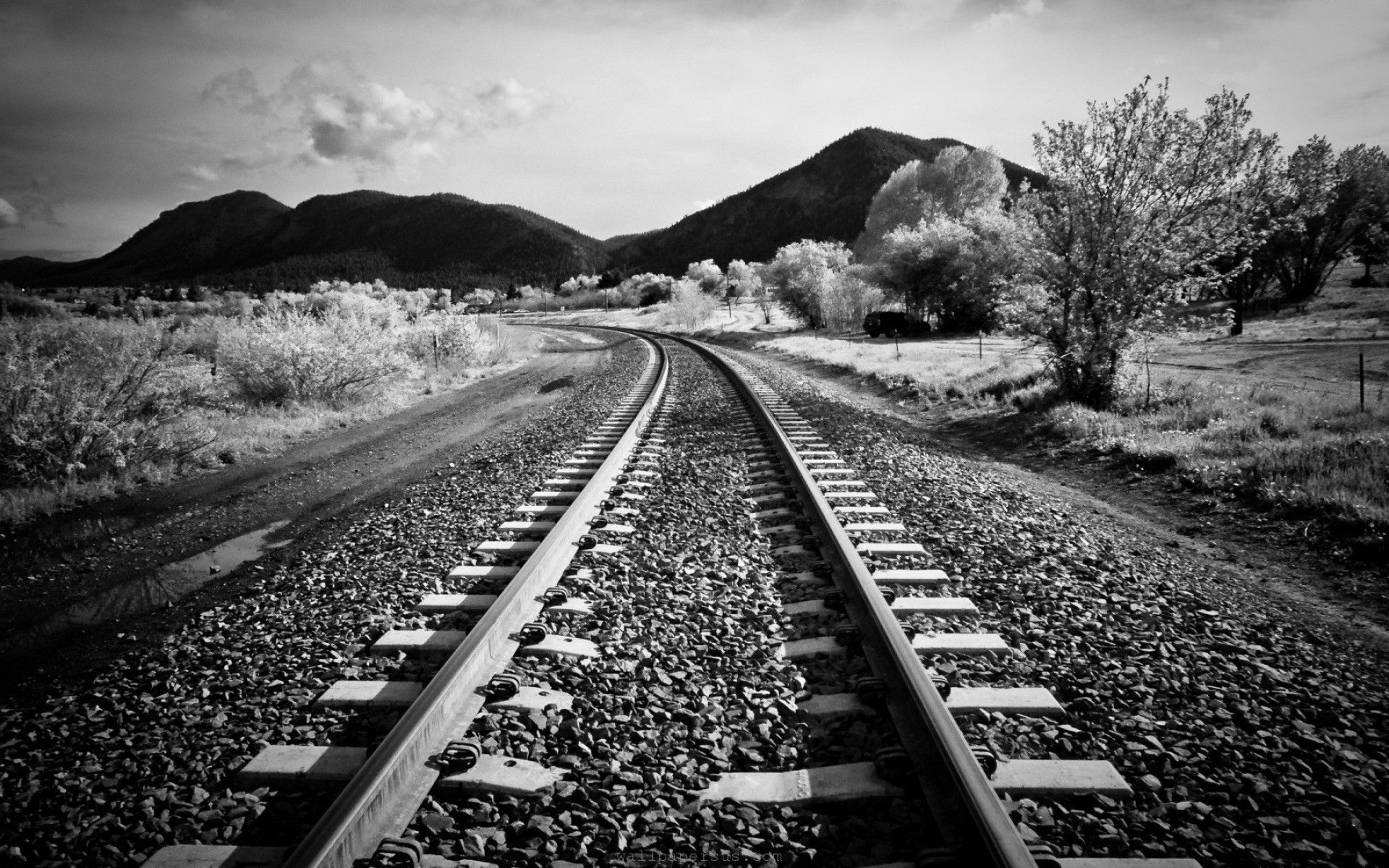 black and white pictures | black or white compliments | pinterest