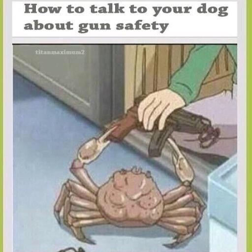 Quality Funny Memes Dankest Memes Quality Memes