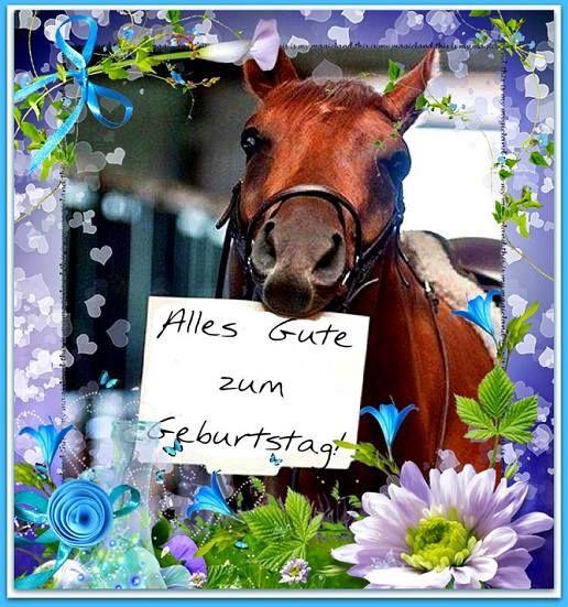 Happy Birthday Horse Pferde Geburtstag Geburtstagswunsche Pferd
