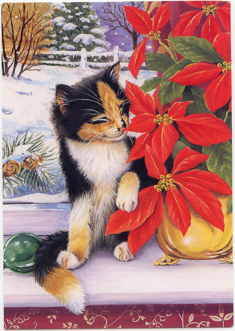 Cat Christmas Cards | The world of postcards | Pinterest ...