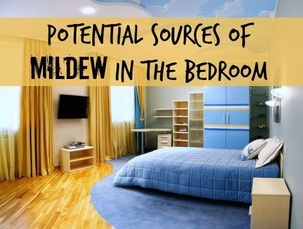 How To Get A Mildew Smell Out Of A Room