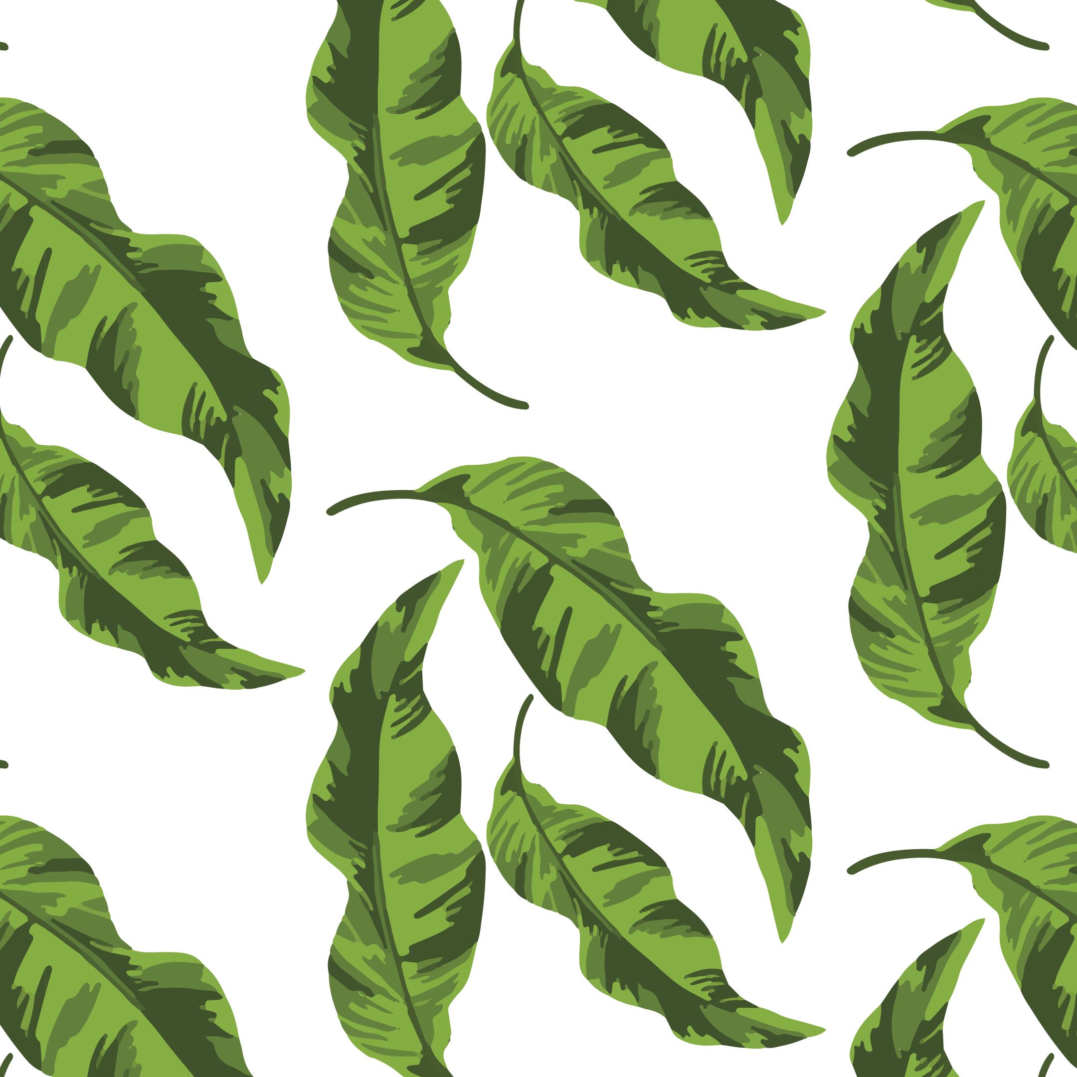 Banana Leaves Peel & Stick Wallpaper Plant leaves