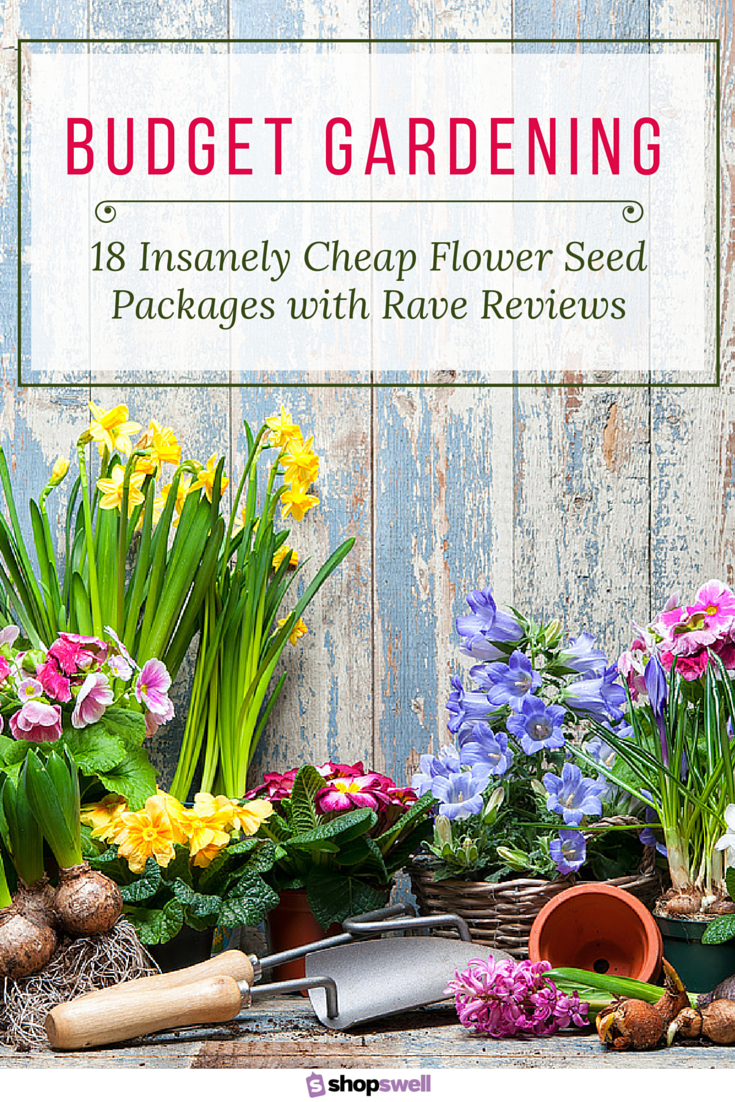 Garden for less 18 insanely cheap flower seeds that get rave you dont necessarily have to pay high prices to get quality garden seeds these 18 flower seed packs are priced insanely cheap and have the reviews to izmirmasajfo