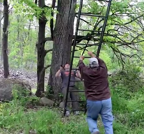 Deer Talk Now How To Set Up A Ladder Stand Safely For