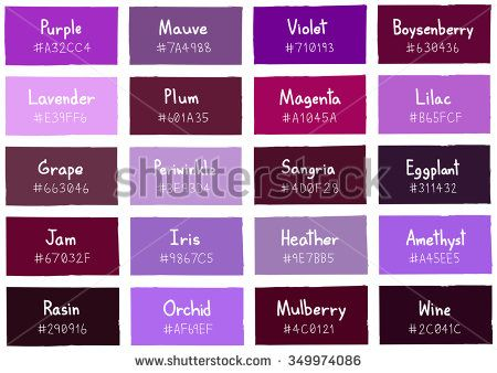 Purple Tone Color Shade Background With Code And Name Ilration