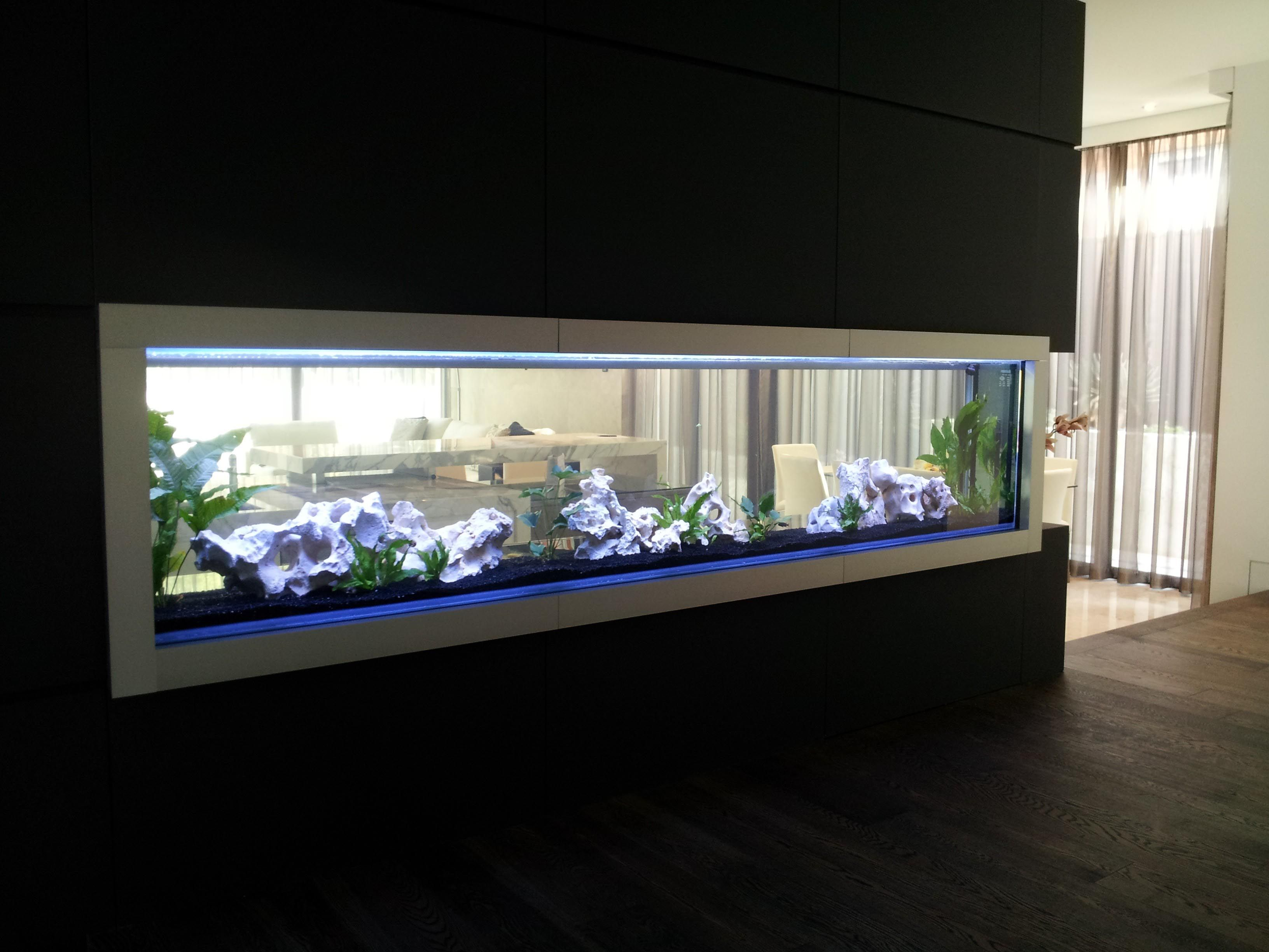 Best Glass Aquarium Manufacturers Aquarium Ideas