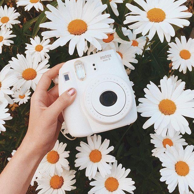 Du liebst was du siehst? Für mehr Popping Pins wie diesen. Folgen Sie ριnτεrεs – Instax Camera – Ideen von Instax Camera. Trending Instax Camera zu verkaufen …