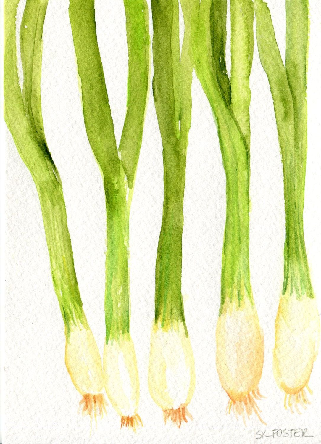 Green Onions Watercolors Paintings Original Vegetable Kitchen