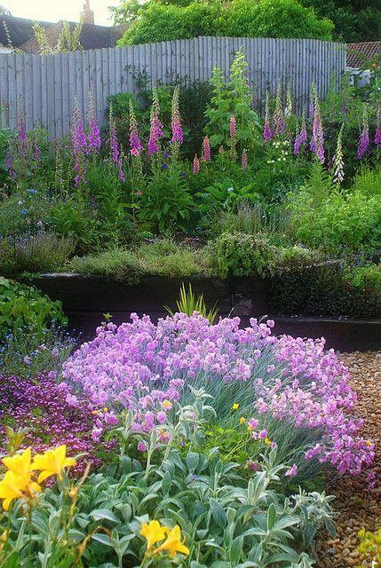 My English Country Garden Purple Garden Gorgeous Gardens