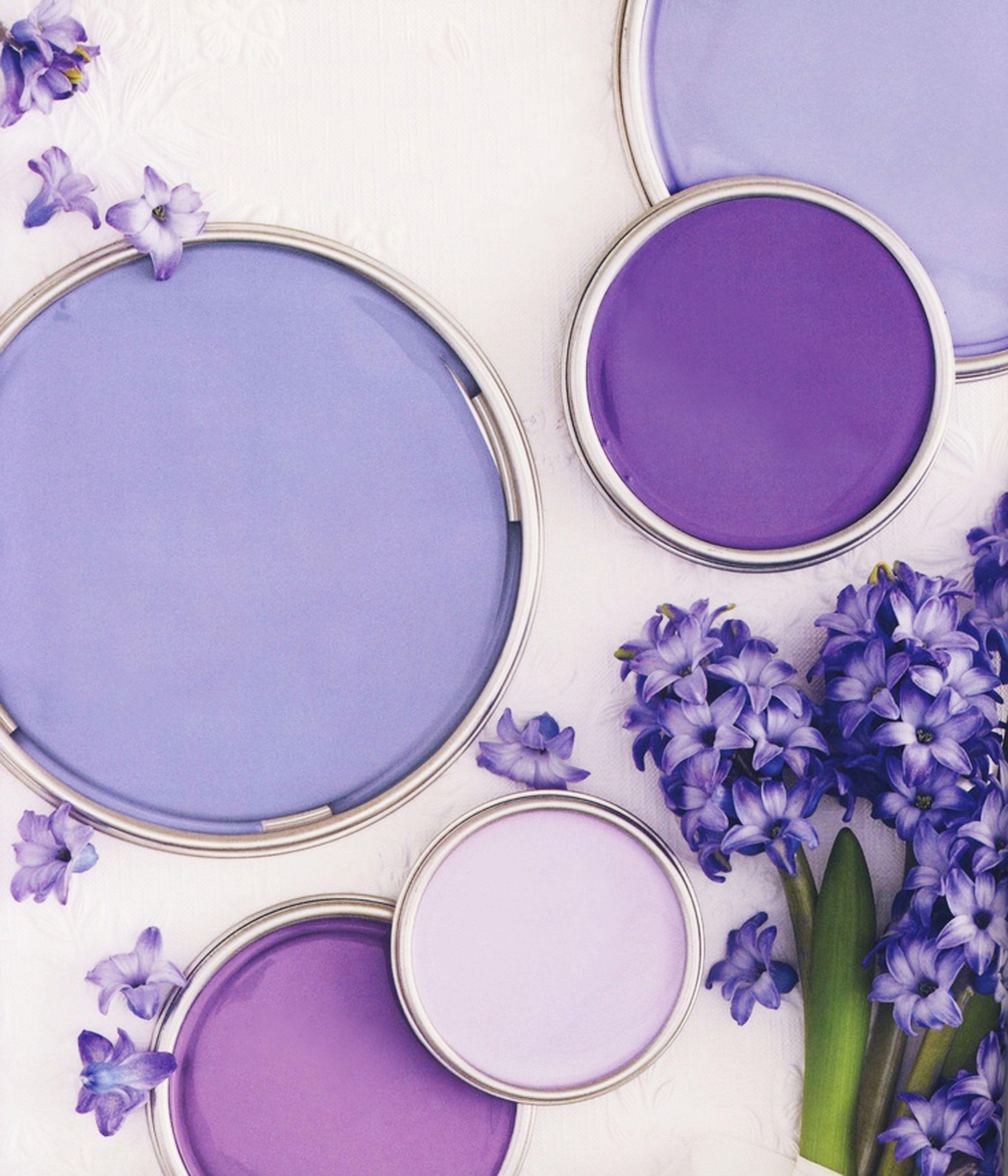 Hyacinth Purple Bhg Palettes In 2019 Paint Color