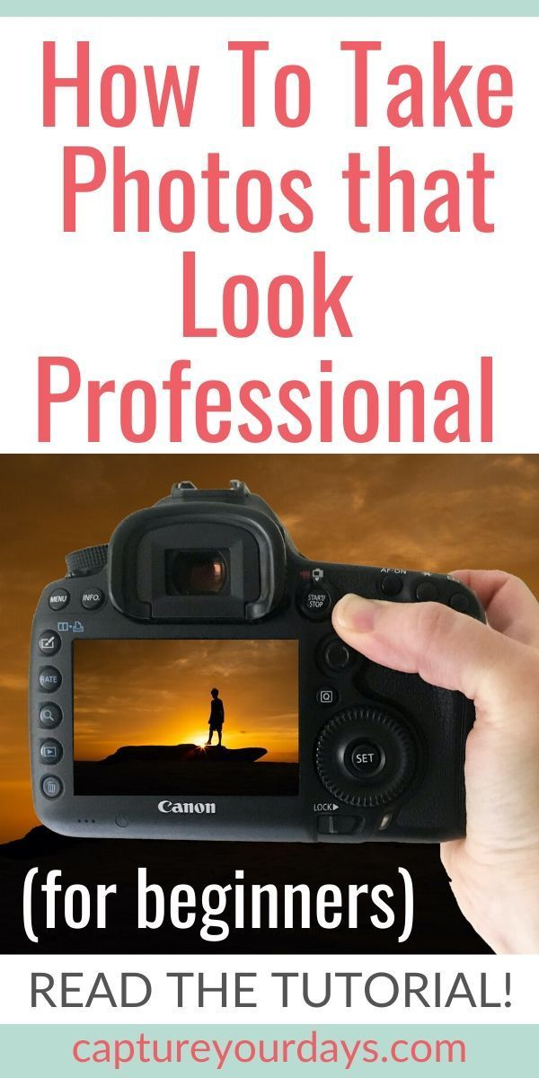Want to take better pictures? If you're a photography beginner, read this photography lesson right n